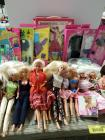Variety of fashion dolls, clothing and trunk