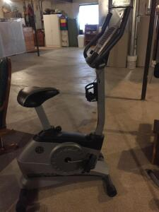 Gold's Gym power spin 290