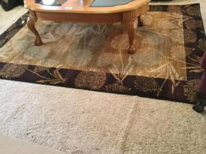 "Area rug measures 64"" x 91"""