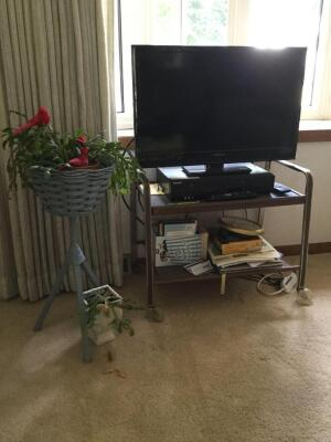 28 inch insignia TV, VHS and DVD combo player, Christmas cactus, retro TV stand on casters.
