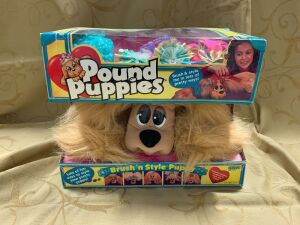 Pound Puppies Brush'n Style Puppy